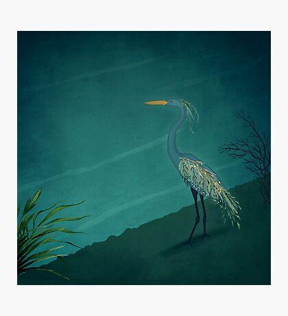 Camouflage: The Crane Photographic Print