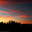 Big Sky Country Evening by rocamiadesign