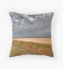 Fall On The Prairies Throw Pillow