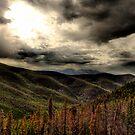 West Ridge by Tim Wright