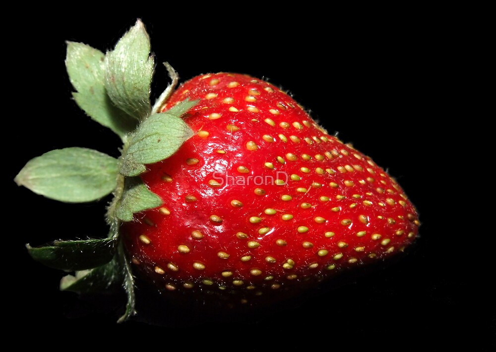 Strawberry Passion by SharonD