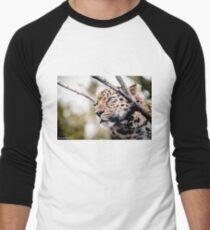 Love Panther IV Men's Baseball ¾ T-Shirt