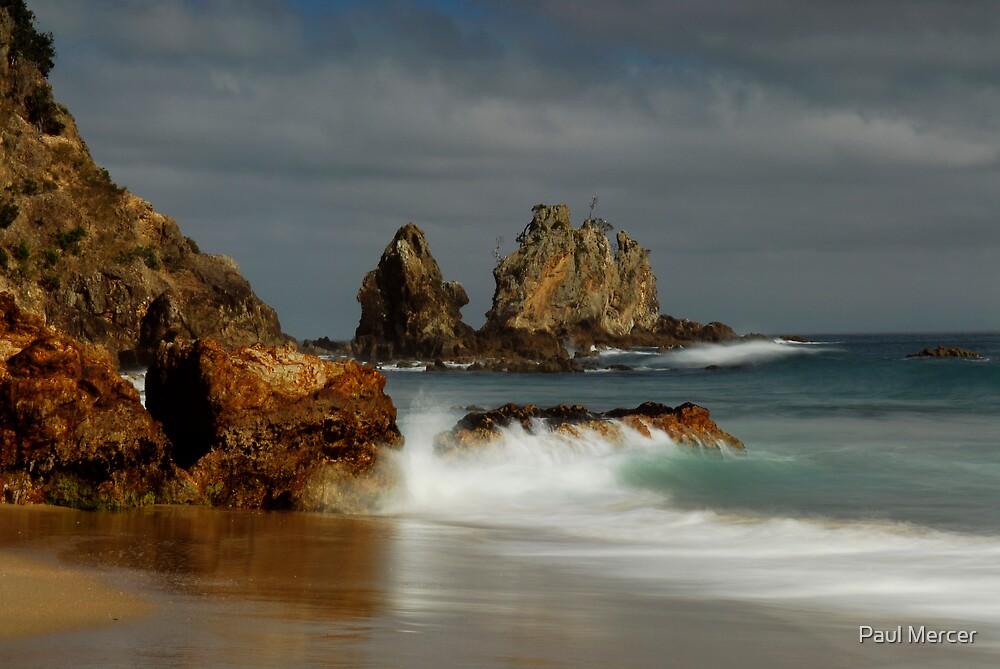 Coromandel coastline 11 by Paul Mercer