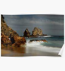 Coromandel coastline 11 Poster