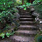 Garden Of Eden by Sean Jansen