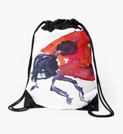 BAANTAL / Pollinate / Ladybird Drawstring Bag