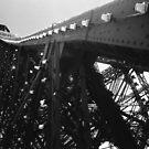 La Tour Eiffel by wildimagenation