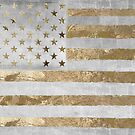 Fashion American Flag Silver Gold by mindydidit