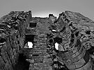 Entering the Castle by Ryan Davison Crisp