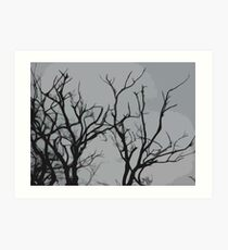 Silhouetted tree Art Print