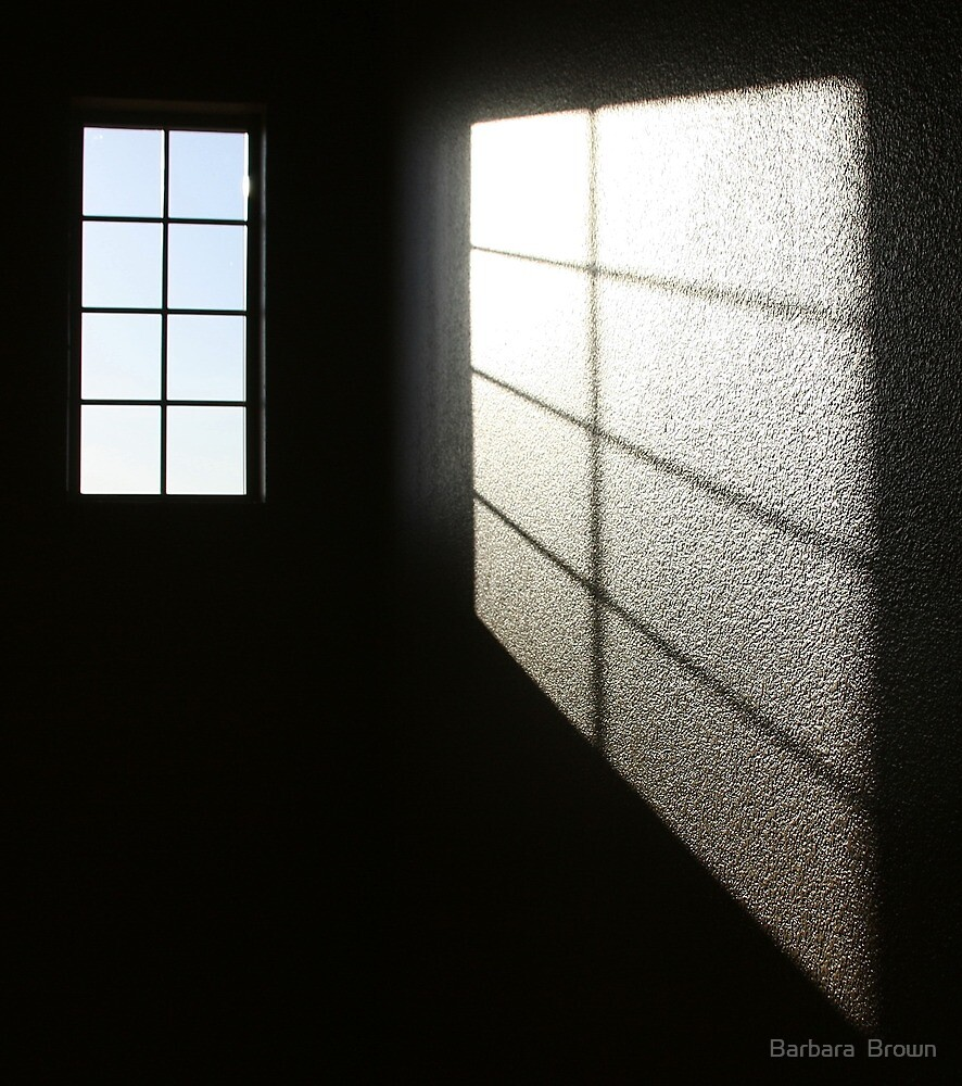 Window Light by Barbara  Brown