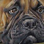 Bull Mastiff by Holley-Ryan