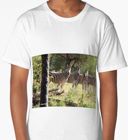 ARE WE SUPPOSE TO SMILE - BURCHELL'S ZEBRA – Equus burchelli – Bontkwagga Long T-Shirt