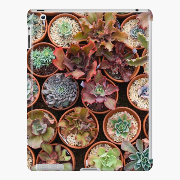 A wall of succulents iPad Snap Case