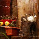 LAZY DAY by Günter Maria  Knauth
