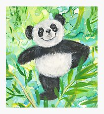 Panda Bear in Yoga Pose Hand to Toe from Yoga for Little Bears Photographic Print
