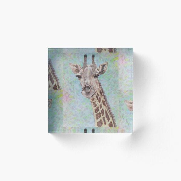 African Giraffe Acrylic Block
