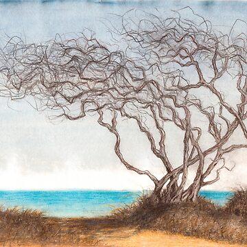 Ocean Worn by HeidiHoHo