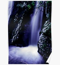 small waterfall on the Milford road Poster