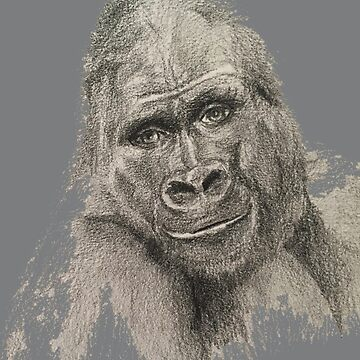 Silver Back Gorilla Face Smiling by MonicaArtist