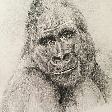 Silver Back Gorilla Smiling hand drawn in pencil by MonicaArtist