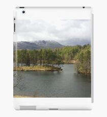 Tarn Hows Tree Scene iPad Case/Skin