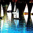 Calm sailing by aussiebob