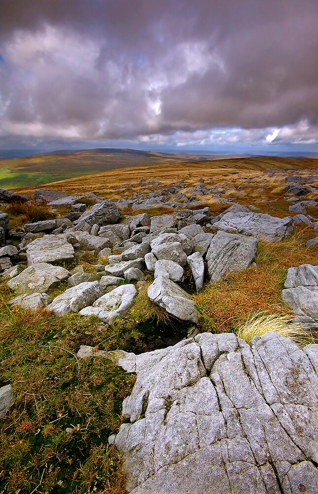 Across to Buckden Pike by Andrew Leighton