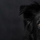 Hello Darkness my old friend by Karen Havenaar