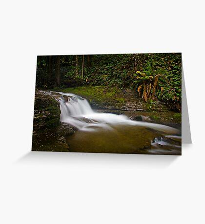 Liffey Falls, Tasmania Greeting Card