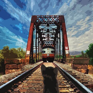 Cat on the railroad by dudutbrito