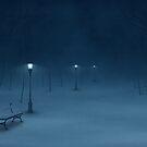 Quiet Night by vladstudio