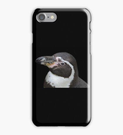 Humbolt Penguin Portrait (Cotswold) iPhone Case/Skin