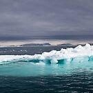 Svalbard Iceberg by Phil Bain