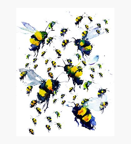 BAANTAL / Pollinate / Bees Photographic Print