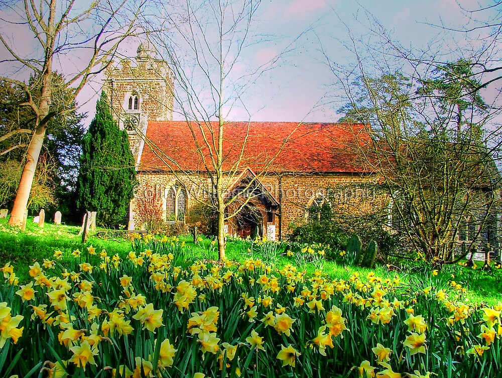 Spring is Here - Oxfordshire by Colin  Williams Photography