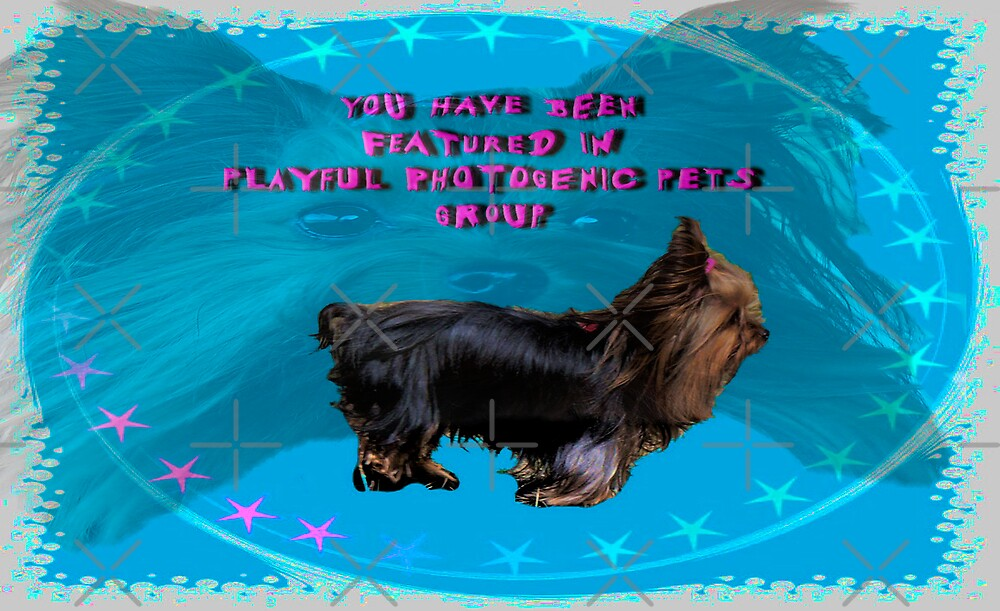 Baby Banner ~ For A Challenge~Playful Photogenic Pets  by Gail Bridger
