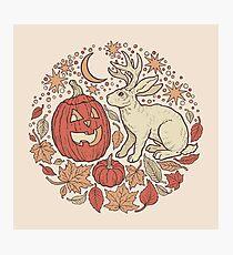 Halloween Friends | Autumn Palette Photographic Print