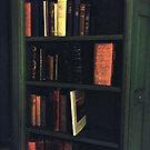 Vintage Bookshelf by apclemens