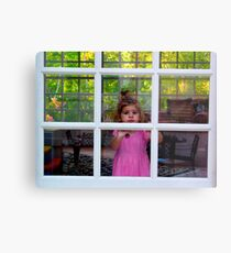 Olivia Through The Window Metal Print