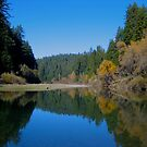 South Fork of the Eel River, Thanksgiving day 2007 by Josef Grosch