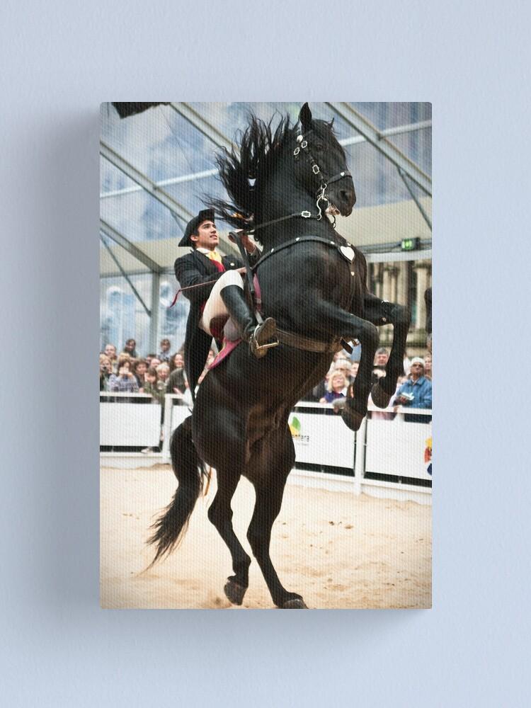 Alternate view of Zorro's horse? Canvas Print