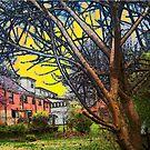 House Backs by Deborah Dillehay