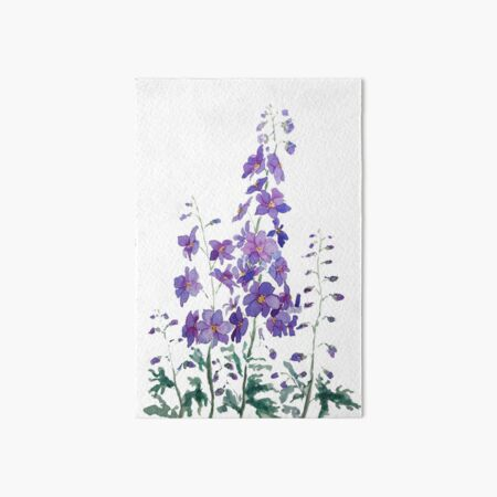 purple blue pink delphinium watercolor  Art Board Print