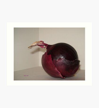 Spanish Onion 1 Art Print