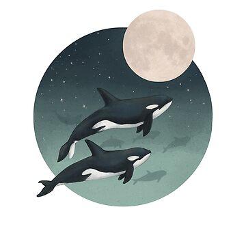 Mondscheinkarawane // Orcas von lauragraves