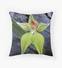 Foxes Lair Cowslip 2 Throw Pillow