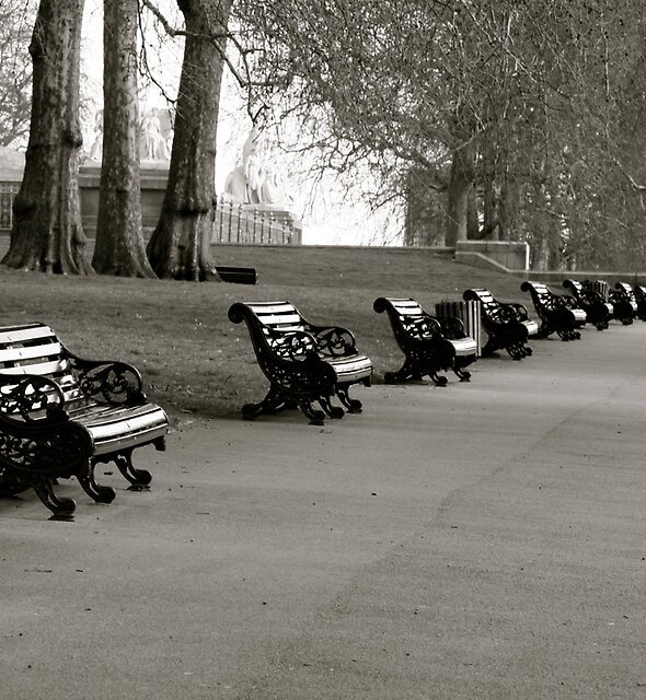 Kensington Park Benches by Whitney Edwards