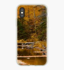 Autumn By a Woodland Stream iPhone Case