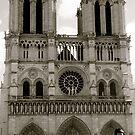 Notre Dame by Whitney Edwards
